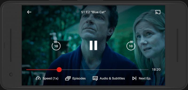 Netflix Playback Speed