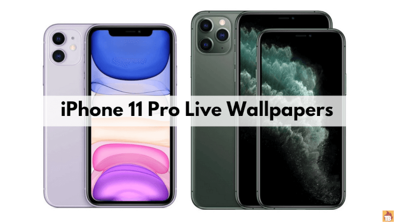 How To Download Iphone 11 Pro Live Wallpapers For Any Android Phone Techburner