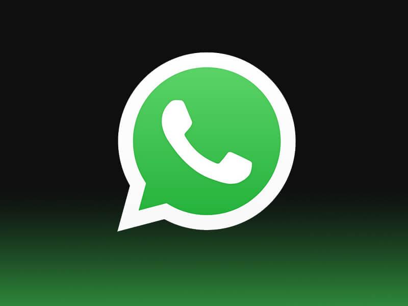 whatsapp privacy policy, whatsapp privacy, whatsapp new policy, whatsapp group link, whatsapp chat