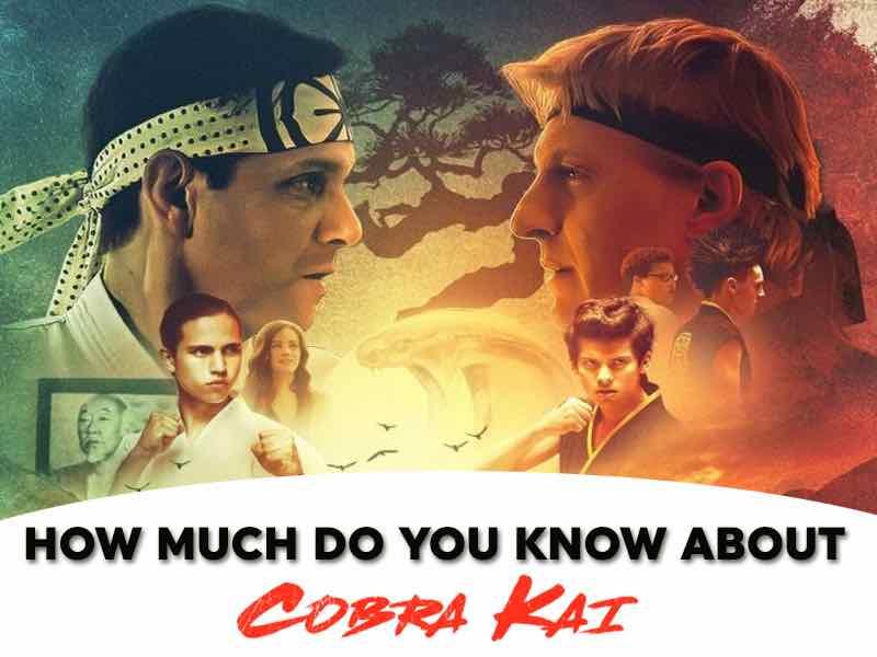 Cobra Kai Quiz